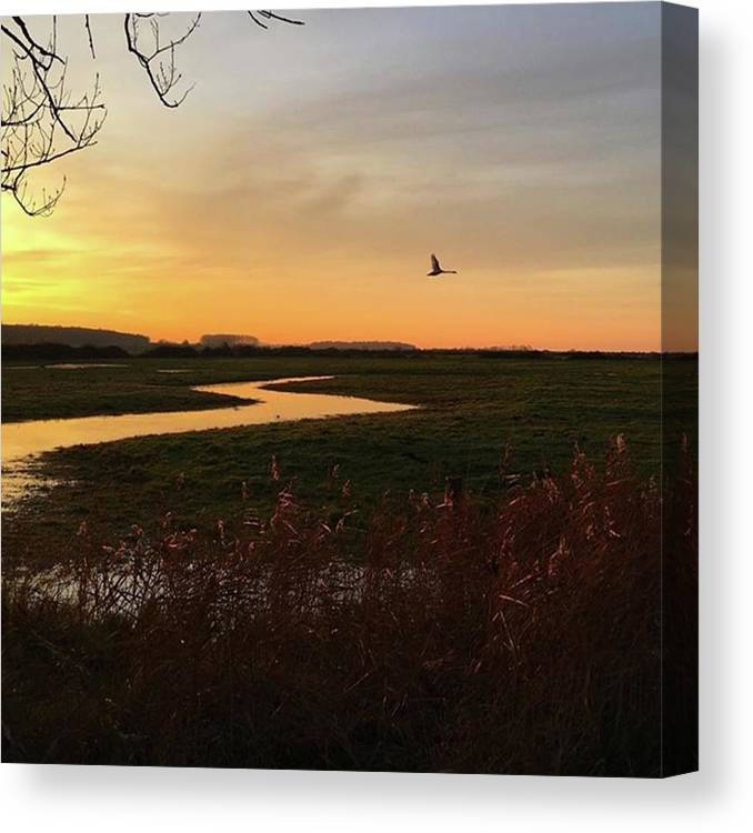 Natureonly Canvas Print featuring the photograph Sunset At Holkham Today  #landscape by John Edwards
