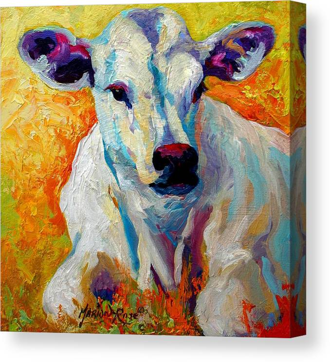 Western Canvas Print featuring the painting White Calf by Marion Rose