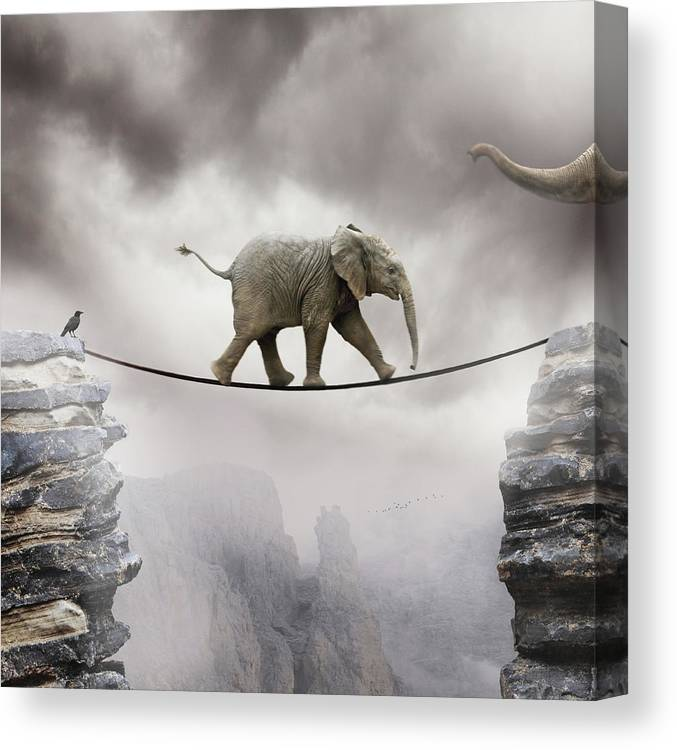 Animal Themes Canvas Print featuring the photograph Baby Elephant by By Sigi Kolbe