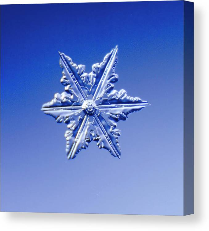 Snow Canvas Print featuring the photograph Snowflake On Blue Background by Fwwidall
