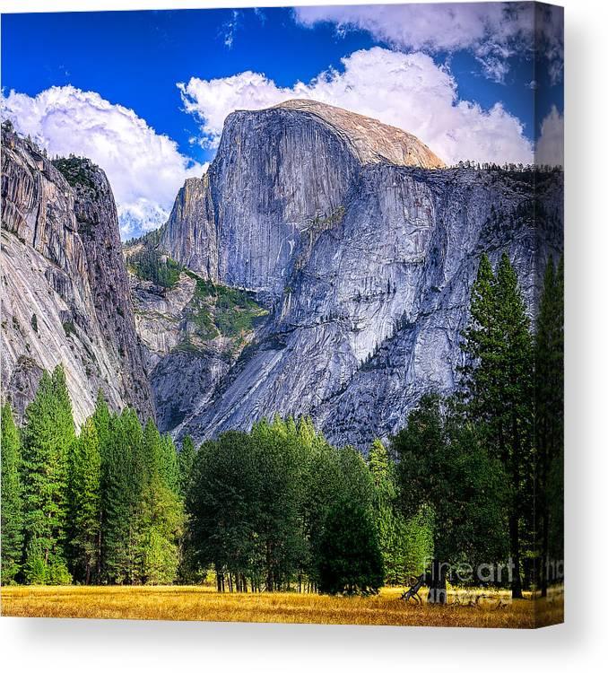 Capitan Canvas Print featuring the photograph Yosemite National Park California by Dancestrokes
