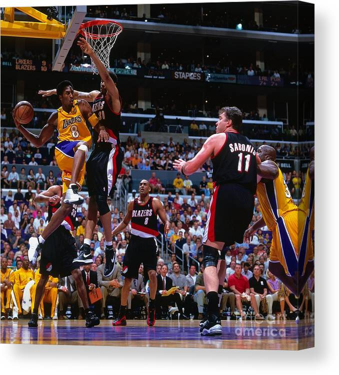 Playoffs Canvas Print featuring the photograph Arvydas Sabonis, Kobe Bryant, and Rasheed Wallace by Andrew D. Bernstein