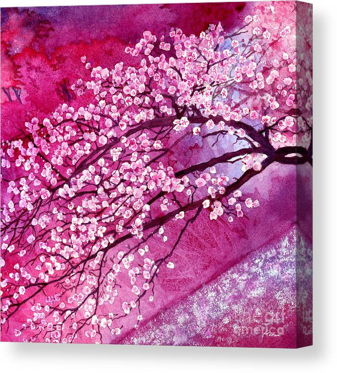 Cherry Blossoms Canvas Print Canvas Art By Hailey E Herrera