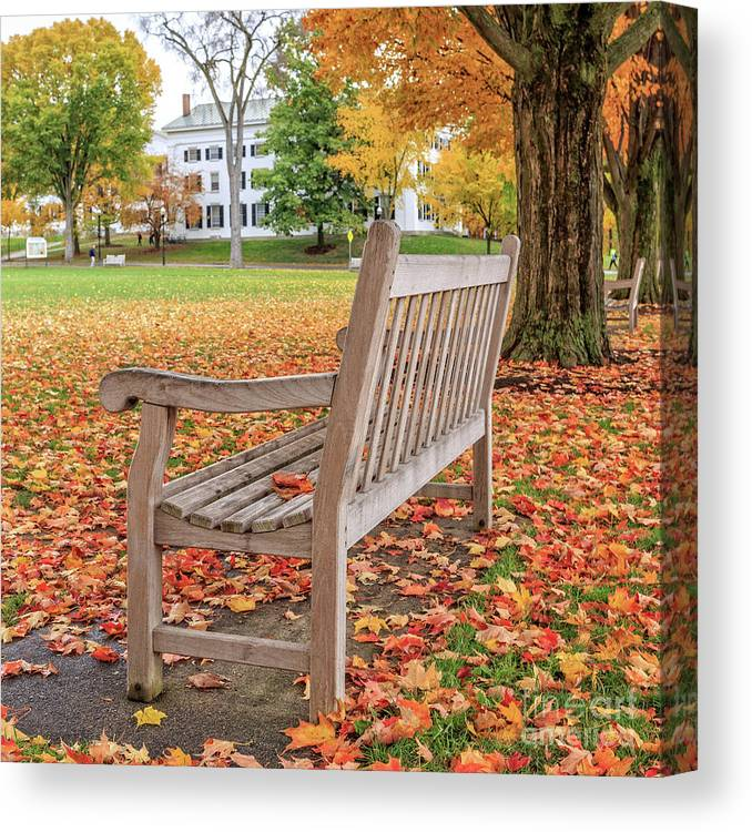 Dartmouth Canvas Print featuring the photograph Dartmouth Hanover Green In Autumn Square by Edward Fielding