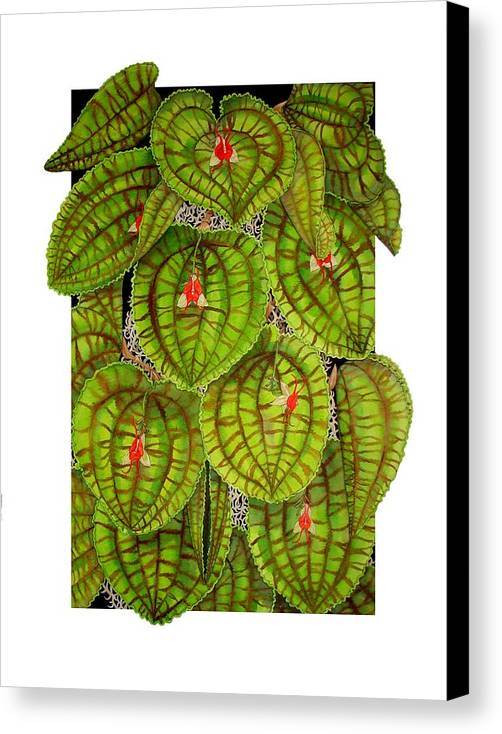Orchid Canvas Print featuring the painting Lepanthes Calodictyon by Darren James Sturrock
