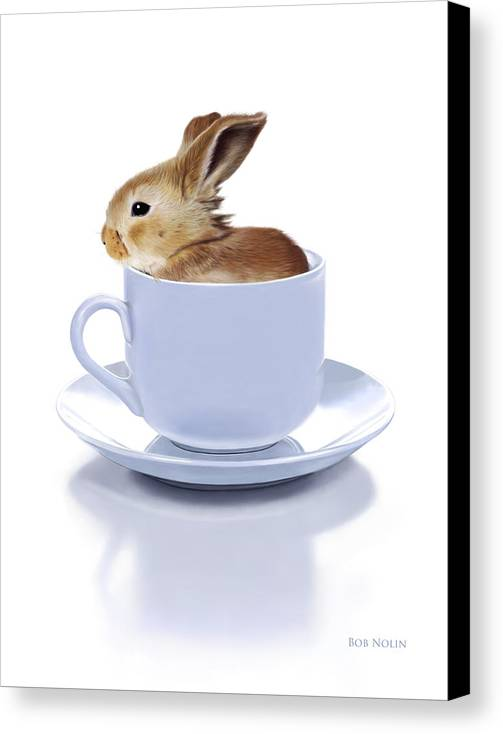 Bunny Canvas Print featuring the digital art Morning Bunny by Bob Nolin