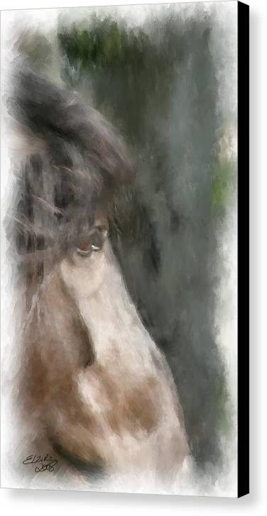 Horse Canvas Print featuring the painting Misty Morn by Elzire S