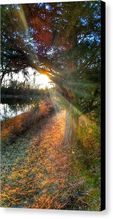 Photography Canvas Print featuring the photograph Sunset Trails by Tim Clark