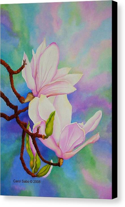 Pastels Canvas Print featuring the painting Spring Magnolia by Carol Sabo