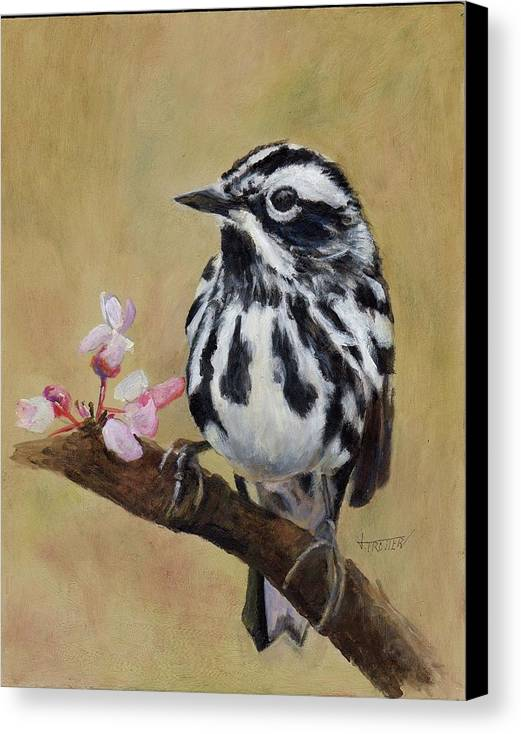 Animal Canvas Print featuring the painting Black And White Warbler by Jimmie Trotter