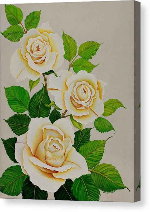 White Roses With Yellow Shading On A White Background. Canvas Print featuring the painting White Roses - Vertical by Carol Sabo