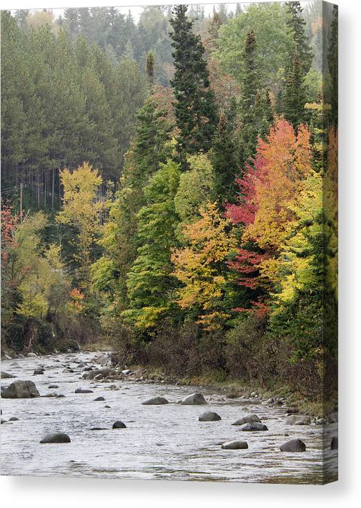 AuSable River near Lake Placid - New York by Brendan Reals