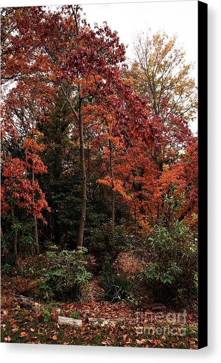 Place Of Beauty Canvas Print featuring the photograph Place Of Beauty by John Rizzuto