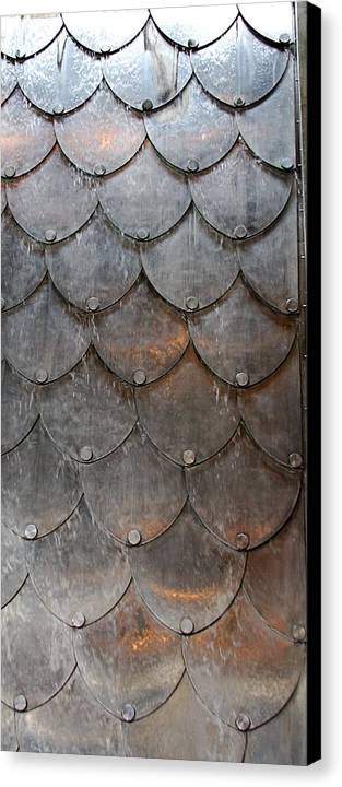 Shapes Canvas Print featuring the photograph Fish Scales by Kenna Westerman