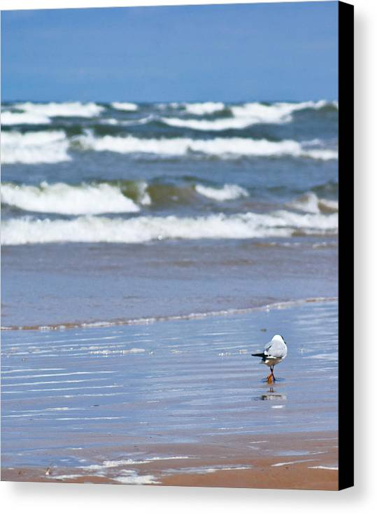 The Sea Canvas Print featuring the photograph Walking On The Water by Vadim Grabbe