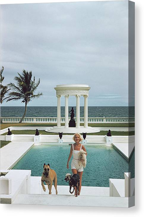 Pets Canvas Print featuring the photograph Czs Dogs by Slim Aarons
