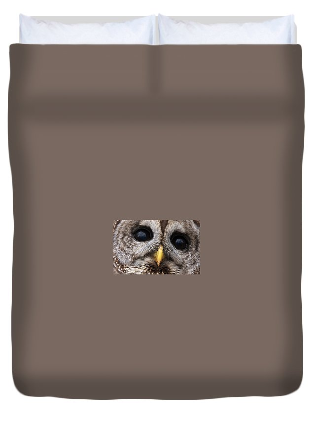 Eye's Duvet Cover featuring the photograph Barred Owl Eye's by Craig Voth