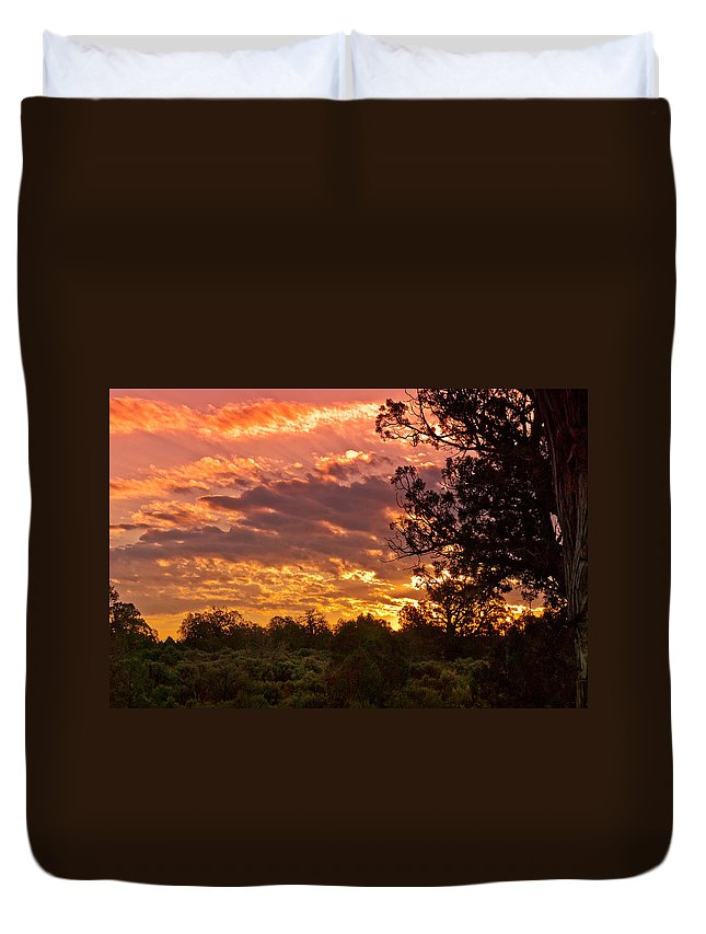 Arizona Duvet Cover featuring the digital art Canyon Dechelly Sunset In Copper And Gold by Bob and Nadine Johnston
