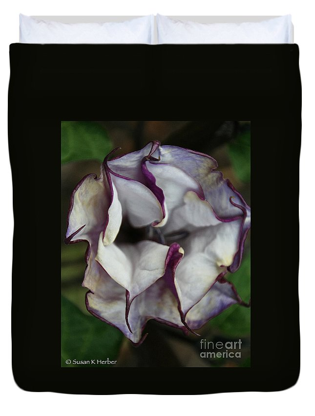 Flower Duvet Cover featuring the photograph Datura Metel by Susan Herber