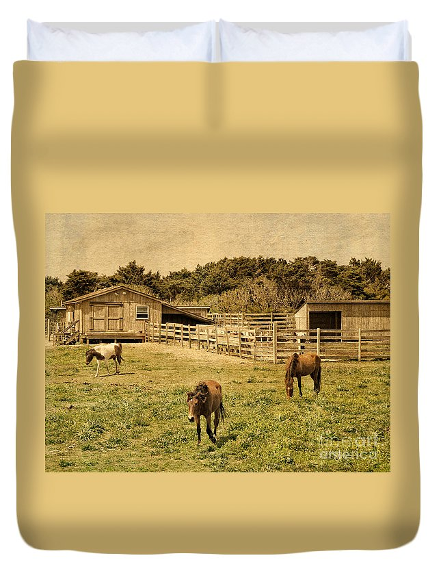 Outdoors Duvet Cover featuring the photograph Feral Horses Of Ocracoke by Dawn Gari