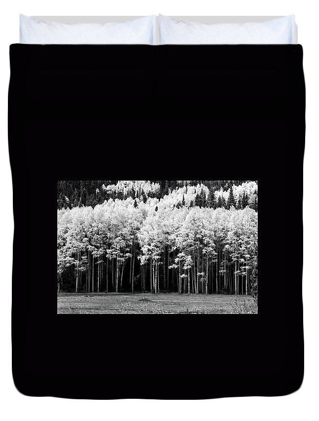 Red River Duvet Cover featuring the photograph New Mexico Aspens by Ron Weathers