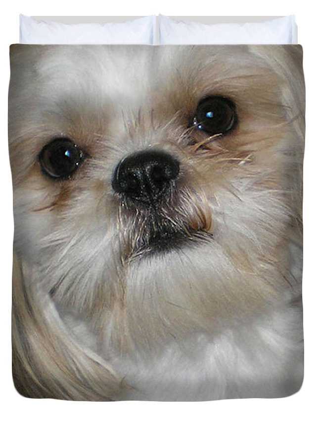 Dog Photos Duvet Cover featuring the photograph Peanut - 043 by Will Logan