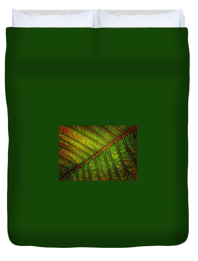 Leaf Duvet Cover featuring the photograph The Underside by David and Carol Kelly