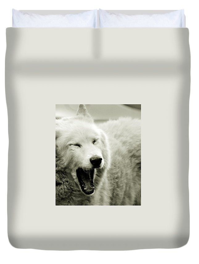 Yawn Duvet Cover featuring the photograph Yawning by Chastity Hoff