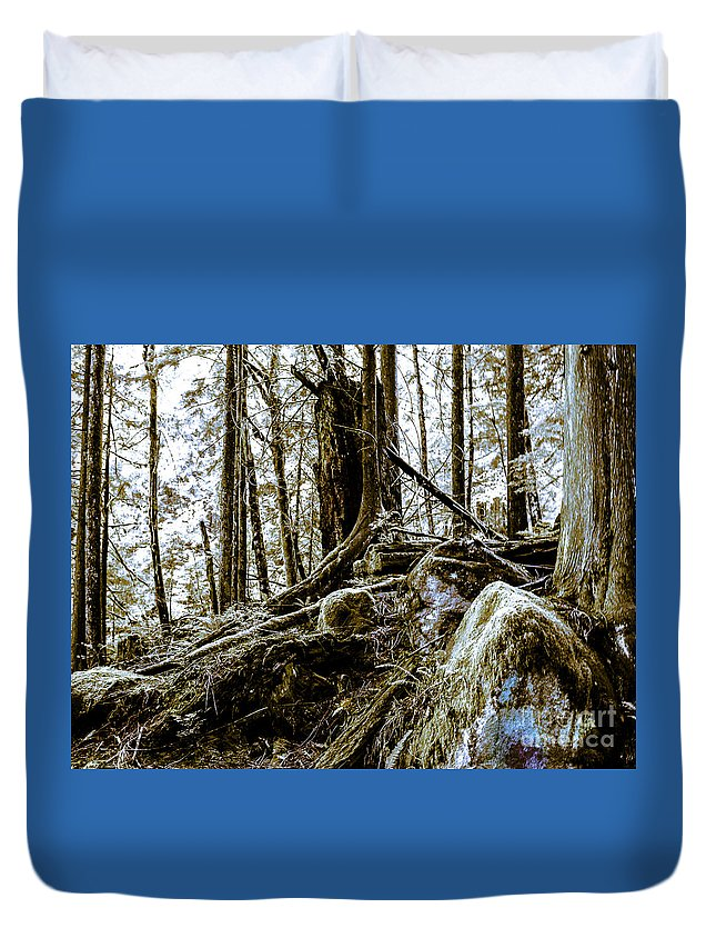 Forest Duvet Cover featuring the photograph _0010060 by David Fabian