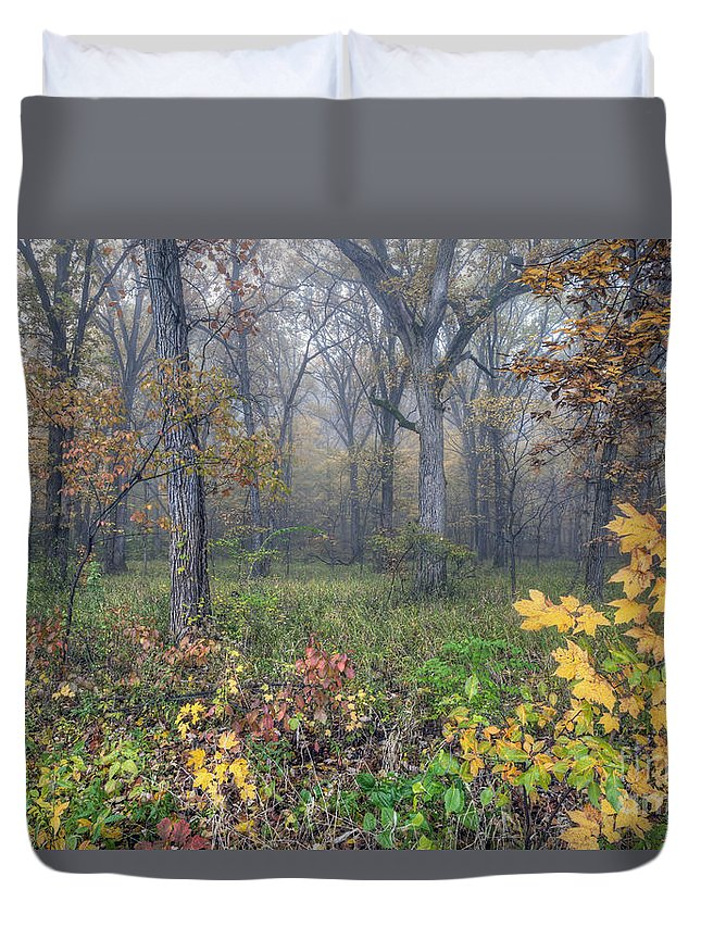 Starved Duvet Cover featuring the photograph 0133 Misty Meadow 2 by Steve Sturgill