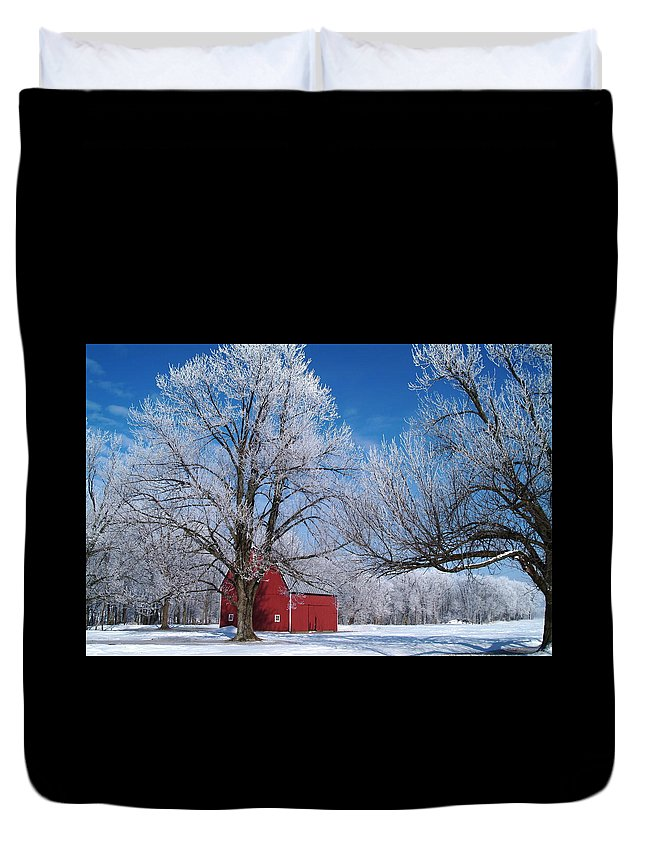 Winter Duvet Cover featuring the photograph 020810-76 by Mike Davis