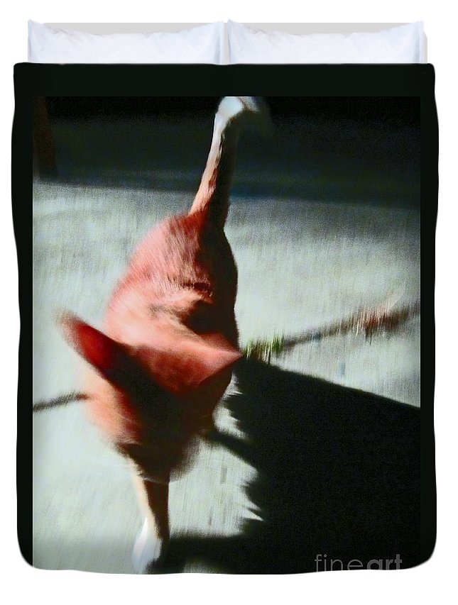 Orange Duvet Cover featuring the photograph Action Cat by Tracy Long