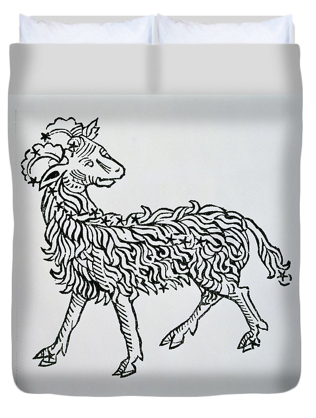 Astronomy Duvet Cover featuring the painting Aries An Illustration From The Poeticon by Italian School