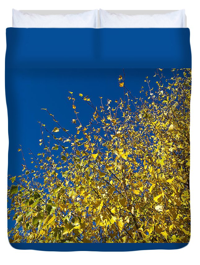 Autumn Duvet Cover featuring the photograph Autumn Blue Sky by David Pyatt