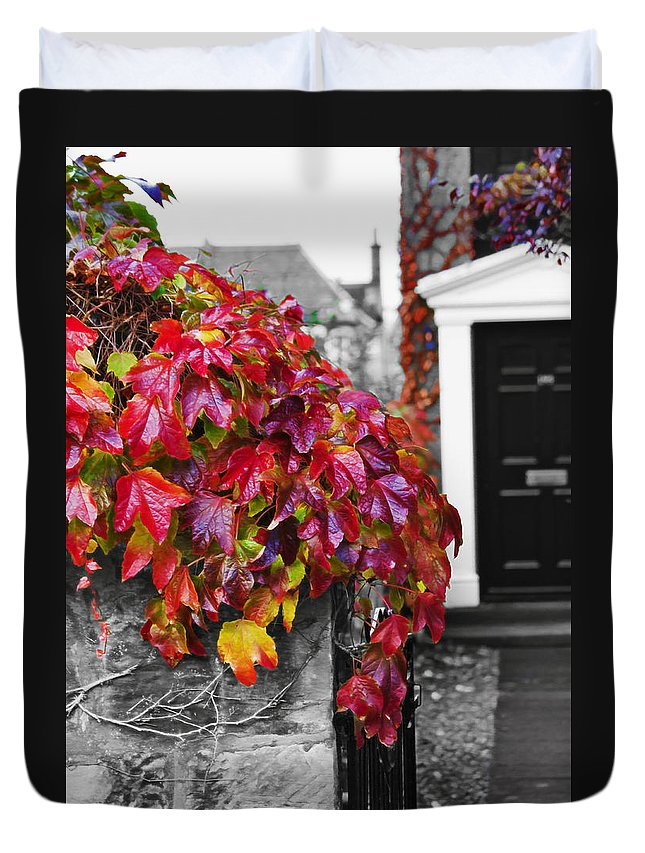 Red Duvet Cover featuring the photograph Autumn Ivy by Hal Halli