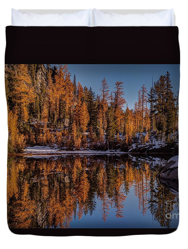 Larches Duvet Cover featuring the photograph Autumn Reflected by Mike Reid