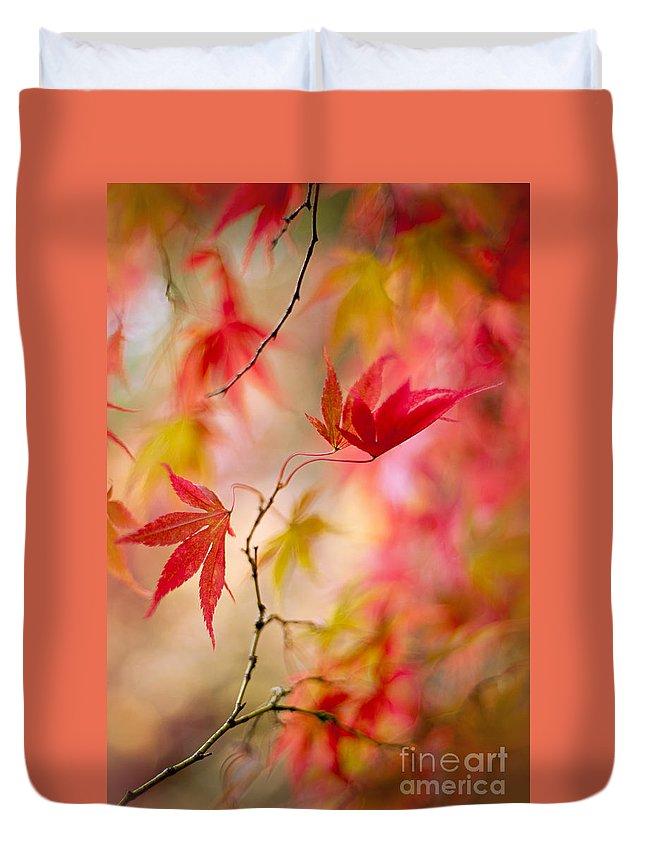 Acer Palmatum Duvet Cover featuring the photograph Autumn Reverie by Jacky Parker