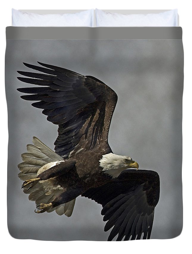 Bald Eagle Duvet Cover featuring the photograph Bald Eagle by Rob Mclean