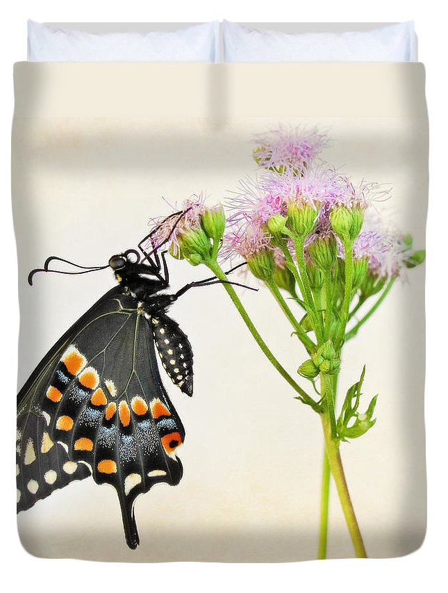 Butterfly Duvet Cover featuring the photograph Black Swallowtail Butterfly by David and Carol Kelly