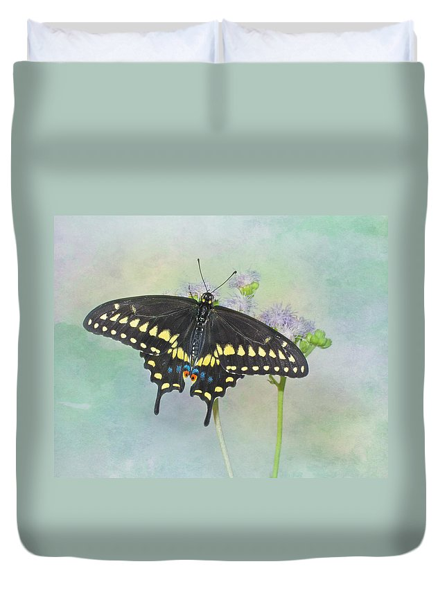 Black Swallowtail Duvet Cover featuring the photograph Black Swallowtail by David and Carol Kelly