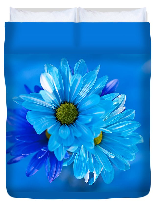Balanced Duvet Cover featuring the photograph Blue Daisies In Vase Outdoors by Jim Corwin