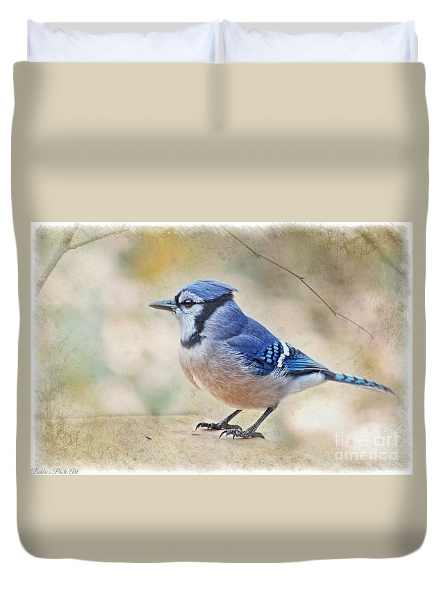 Bird Duvet Cover featuring the photograph Blue Jay by Debbie Portwood