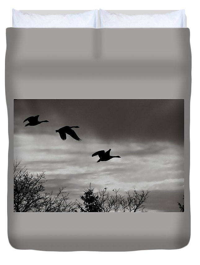 Canadian Geese Duvet Cover featuring the photograph Canadian Geese by Katherine Townsend