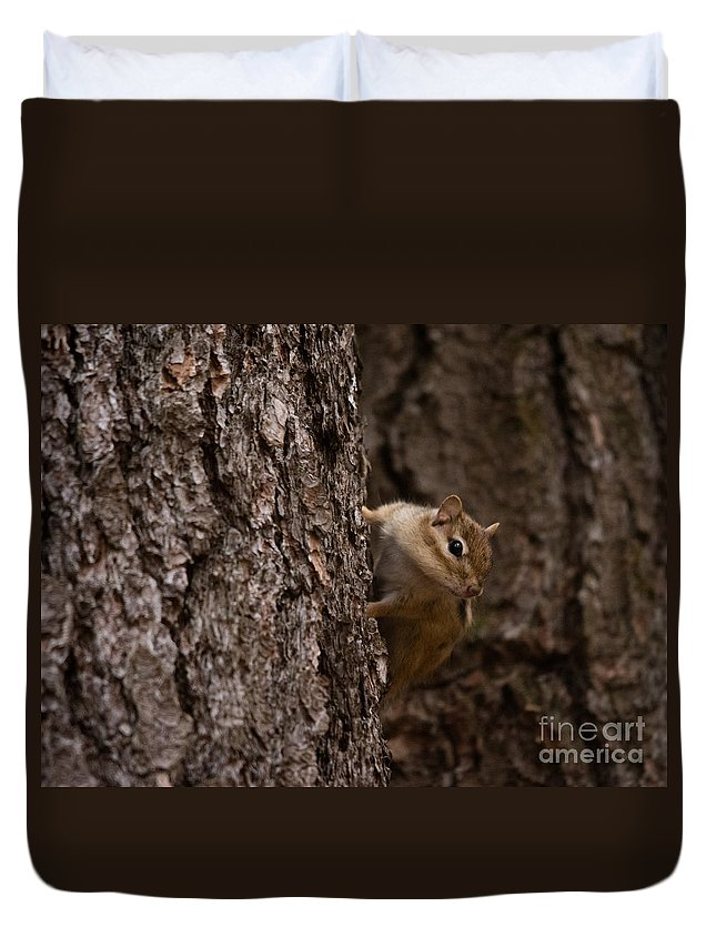 Duvet Cover featuring the photograph Cheeky Chipmunk by Cheryl Baxter