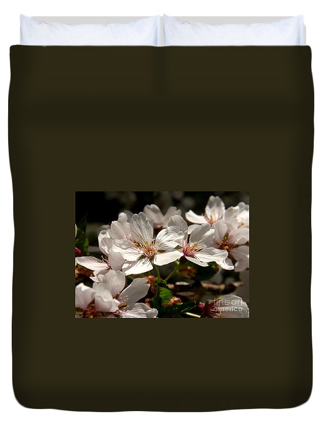 Cherry Duvet Cover featuring the photograph Cherry Blossom - 3 by Kenny Glotfelty