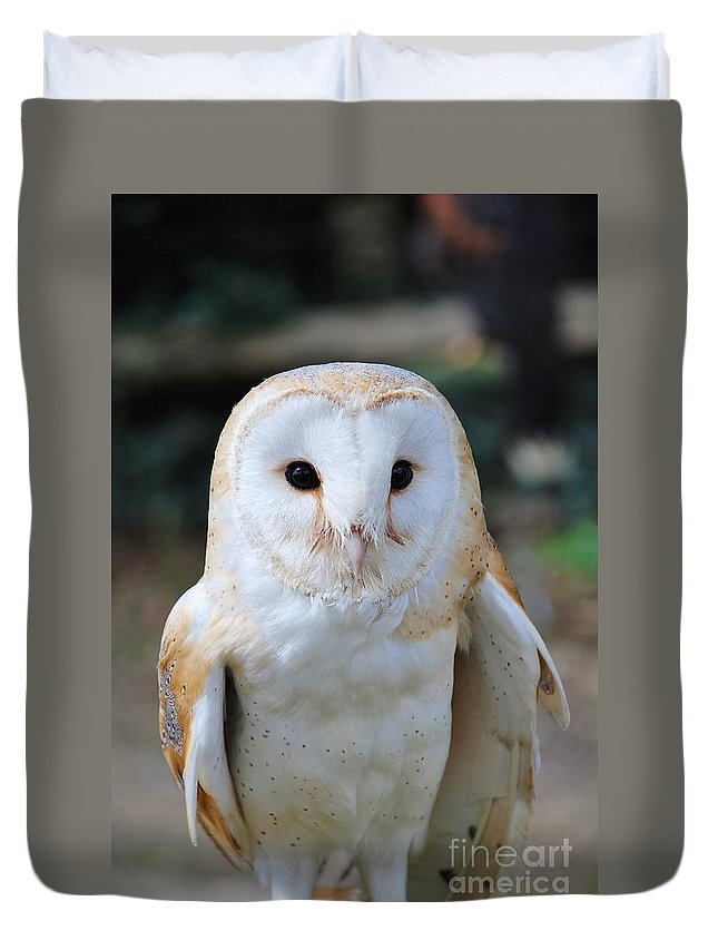 Common Duvet Cover featuring the photograph Common Barn Owl by David Fowler