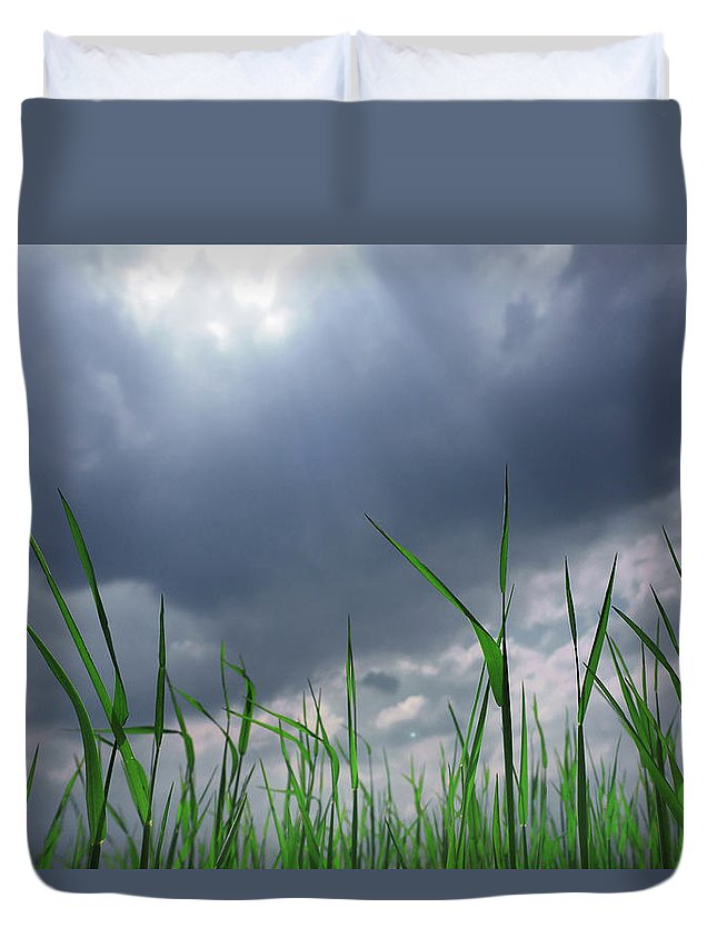 Thunderstorm Duvet Cover featuring the photograph Corn Plant With Thunderstorm Clouds by Silvia Otte