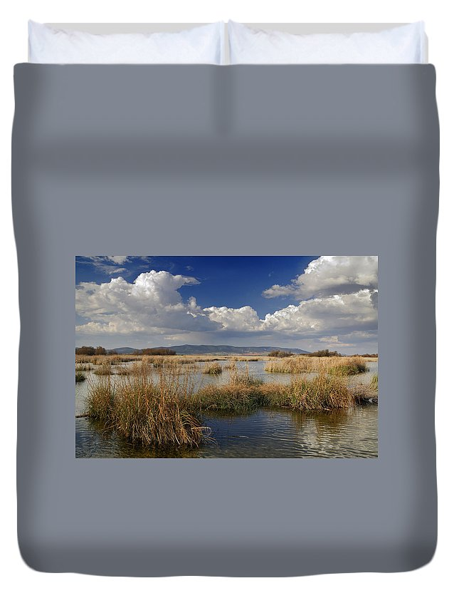 Water Duvet Cover featuring the photograph Daimiel by Guido Montanes Castillo