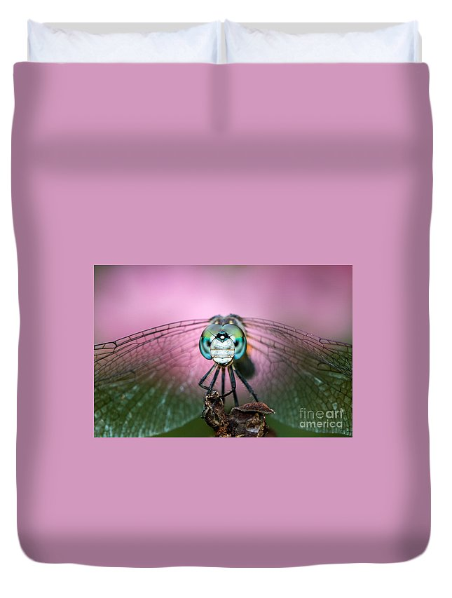 Animal Duvet Cover featuring the photograph Dashing Blue Dasher by Abeselom Zerit