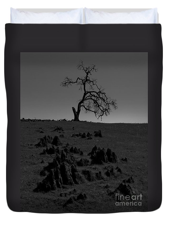 Dead Duvet Cover featuring the photograph Death Of An Oak Tree by B Christopher